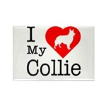 I Love My Collie Rectangle Magnet