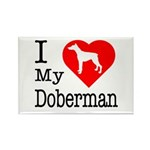I Love My Doberman Pinscher Rectangle Magnet