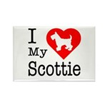 I Love My Scottish Terrier Rectangle Magnet