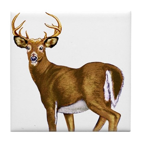 American White Tail Deer Buck Tile Coaster