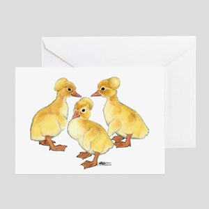 Crested Ducklings Greeting Card