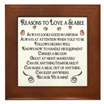 10 Reasons to love a Seabee Framed Tile