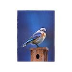 Bluebird (Female) 5'x7'Area Rug