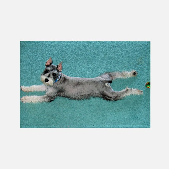 Puppy Yoga Rectangle Magnet
