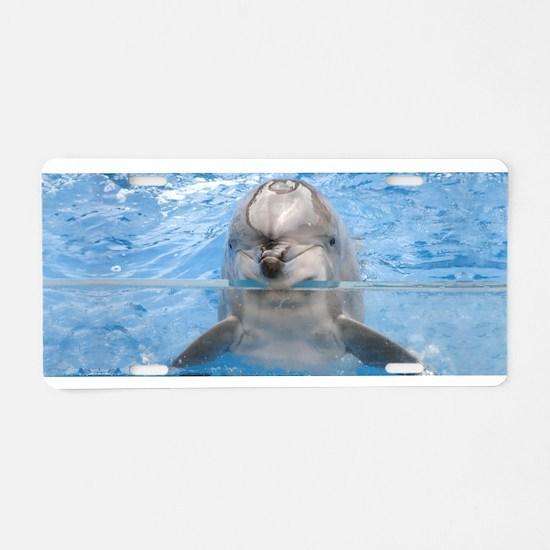 Helaine's Dolphin Aluminum License Plate