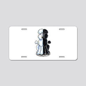Double Standard Aluminum License Plate