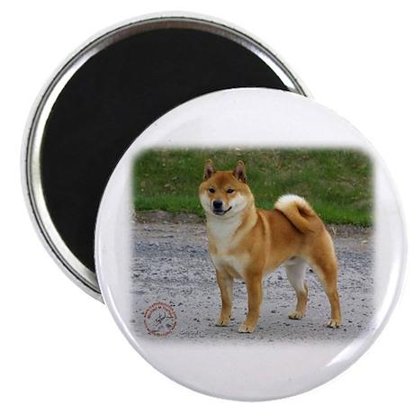 """Shiba Inu 9T075D-026 2.25"""" Magnet (10 pack)"""