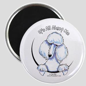 White Standard Poodle IAAM Magnet