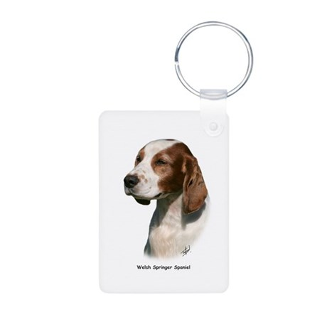 Welsh Springer Spaniel 9Y394D-046 Aluminum Photo K