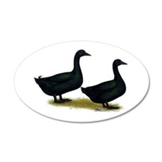 Cayuga Duck Pair 22x14 Oval Wall Peel