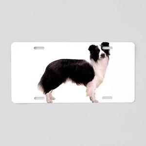 Black Border Collie Dog Aluminum License Plate