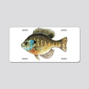 Bluegill Bream Fishing Aluminum License Plate