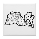 Joshua Trees and Intersection Tile Coaster