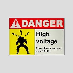 High Voltage Magnet