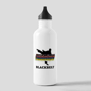 Taekwondo Black Belt Colors Stainless Water Bottle