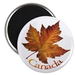 """Canada Maple Leaf 2.25"""" Magnet (100 pack)"""