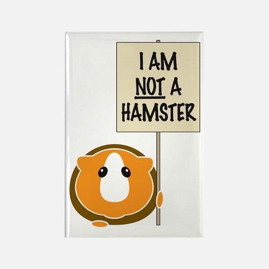 I am Not a Hamster Rectangle Magnet (10 pack)