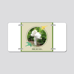 Humphrey 3 Aluminum License Plate