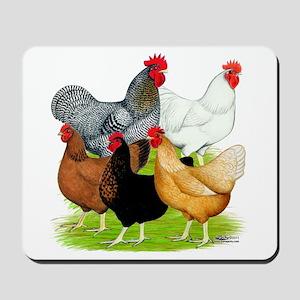 Sex-link Chicken Quintet Mousepad