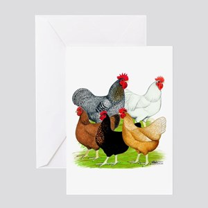 Sex-link Chicken Quintet Greeting Card