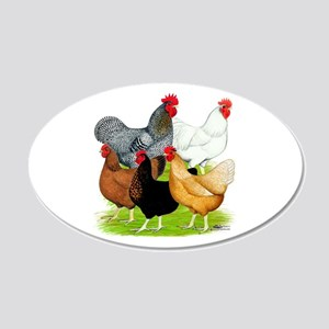 Sex-link Chicken Quintet 22x14 Oval Wall Peel