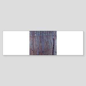 Beeches Sticker (Bumper)