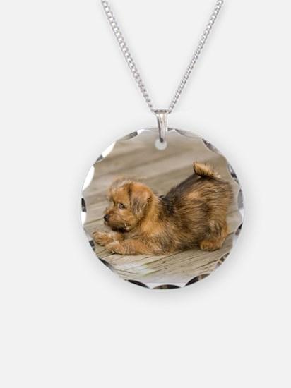 Playful Norfolk Necklace