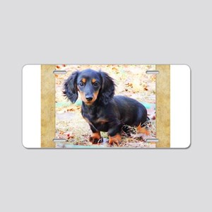 Puppy Love Doxie Aluminum License Plate