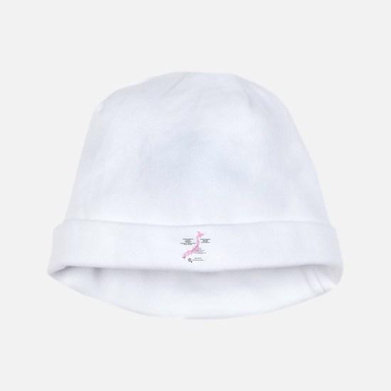 Japan 3/11/2011 baby hat