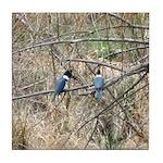 Kingfisher Pair Tile Coaster