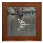Great Blue Heron Wading Framed Tile