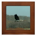 Heron Flying Framed Tile