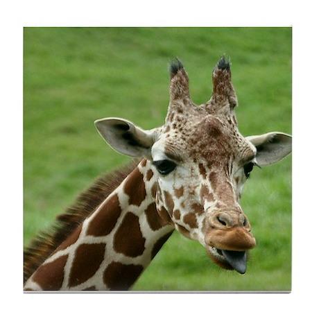 animals/wildlife Tile Coaster