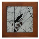 Nest Builder Framed Tile