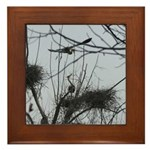 Hovering Over the Nest Framed Tile