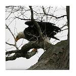Bald Eagle Wingspread Tile Coaster