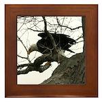 Bald Eagle Wingspread Framed Tile