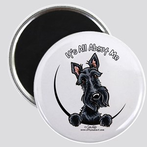 Black Scottie IAAM Magnet