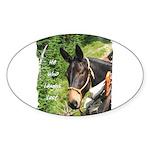 Mule Sticker (Oval)