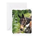 Mule Greeting Cards (Pk of 20)