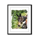 Mule Framed Panel Print
