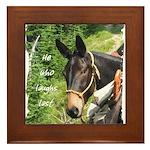 Mule Framed Tile