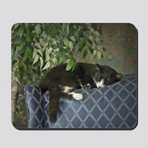 Schubert the Kitty Cat Sleeping Catnap Mousepad