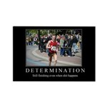 DeMotivational - Determination - Magnet