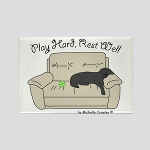 Black Lab - Play Hard Rectangle Magnet