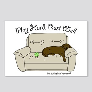 Chocolate Lab - Play Hard Postcards (Package of 8)