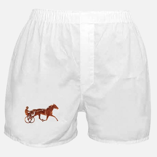 Brown Pacer Silhouette Boxer Shorts
