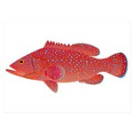 Coral Hind Grouper 5x7 Flat Cards (Set of 20)