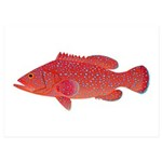 Coral Hind Grouper 5x7 Flat Cards (Set of 10)