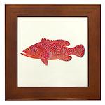 Coral Hind Grouper Framed Tile